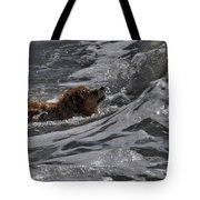 Surfer Dog 2 Tote Bag