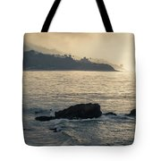 Leo Carrillo Beach Tote Bag