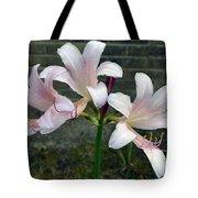 Surprise Lilies Tote Bag