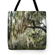 Surreal Gothic Savannah Georgia Trees With Hanging Spanish Moss Tote Bag