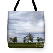 Surreal Trees And Cloudscape Tote Bag