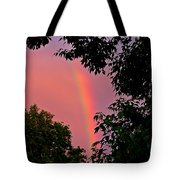 Surround The Rainbow Tote Bag
