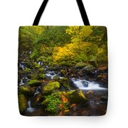 Surrounded By Fall Color Tote Bag