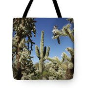 Surrounded Saguaro Cactus Wren Tote Bag