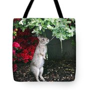 Surveying Next Leafy Meal Tote Bag