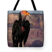 Surveying The Canyon Tote Bag