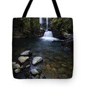 Susan Creek Falls Oregon 1 Tote Bag