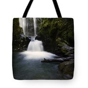 Susan Creek Falls Oregon 2 Tote Bag