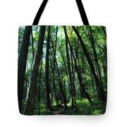Susan Creek Indian Mound Trail Tote Bag