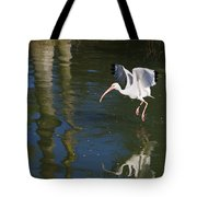Suspended In Flight Tote Bag