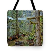Suspended In The Rain Forest Tote Bag
