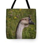 Suspicious Pause Tote Bag