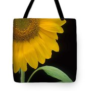 Sussex County Gem Tote Bag