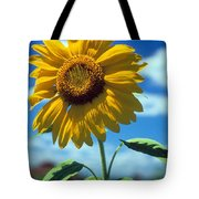 Sussex County Sunflower Tote Bag