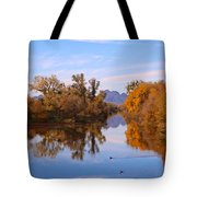 Sutter Buttes From Hughes Road Tote Bag