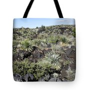 Sw01 Southwest Tote Bag