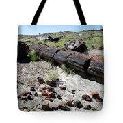 Sw10 Southwest Tote Bag