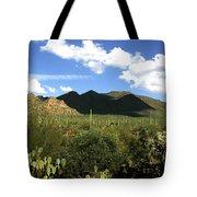 Sw194 Southwest Tote Bag