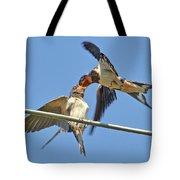 Swallow And Cub Tote Bag
