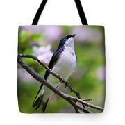 Swallow Song Tote Bag