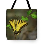 Swallow Tail Butterfly Tote Bag