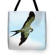 Swallow-tailed Kite Eating Tote Bag
