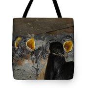 Swallows Opera  Tote Bag