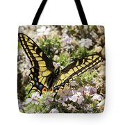 Swallowtail At Sand Wash Tote Bag