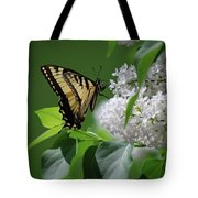 Swallowtail Beauty Tote Bag