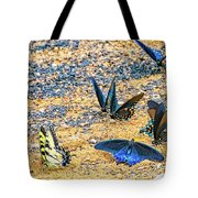 Swallowtail Butterfly Convention Tote Bag