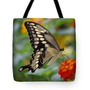 Swallowtail On A Lantana Tote Bag