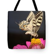 Swallowtail On Pink Flower  Tote Bag