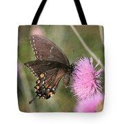Swallowtail On Thistle Tote Bag