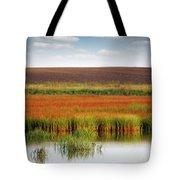 Swamp And Field Landscape Autumn Season Tote Bag