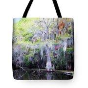 Swamp Colors Tote Bag