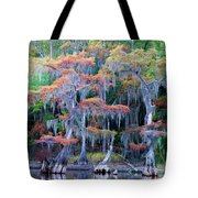 Swamp Dance Tote Bag