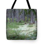 Swamp Garden At Magnolia Plantation And Gardens Tote Bag