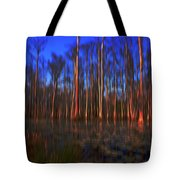 Swamp In Cypress Gardens Tote Bag