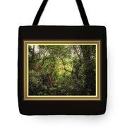 Swamp L B With Decorative Ornate Printed Frame. Tote Bag