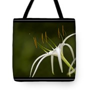 Swamp Lily Tote Bag