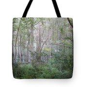Photo Of Swamp Tote Bag