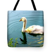 Swan Cygnet By Earl's Photography Tote Bag
