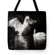 Swan Display Tote Bag