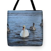 Swan Family At Sea Tote Bag
