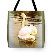 swan in the genus Cygnus Tote Bag
