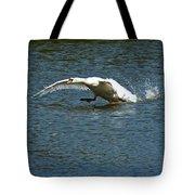 Swan Landing 2 Tote Bag