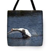 Swan Landing 3 Tote Bag