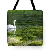 Swan On The River Lathkill Tote Bag