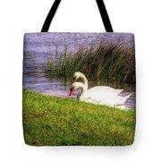 Swan Pair Warm Color Tote Bag