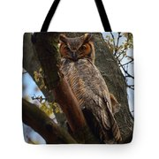Swan Point Great Horned Owl Tote Bag